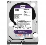 HDD 1T Gb Western Purple  – Sata  chuyên camera